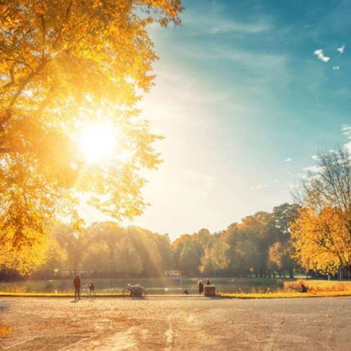 Clara-Zetkin-Park im Herbst